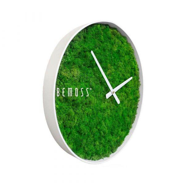 reloj musgo marco blanco